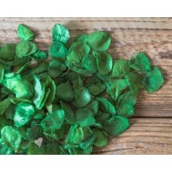 Listki zielone